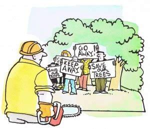 Save rainforest essay